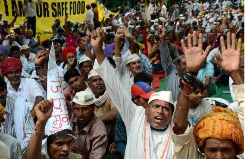 indian farmers protest against monsanto