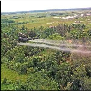 agent orange sprayed forests