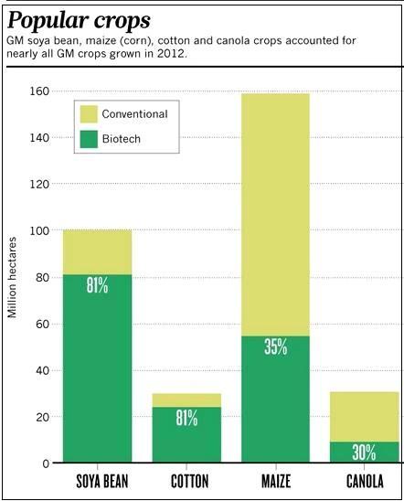 popular gm crops 2012