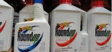 glyphosate round up